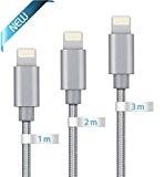 Câble Pour iPhone Globalink Lot de 3(1m 2m 3m) Câbles Lightning Vers USB Tressé Gris GARANTIE A VIE Chargeur Renforcé ...