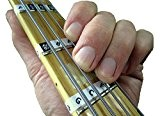 FRETNOTES Autocollants pour Guitare BASSE - 4 Cordes Touche Droite Notes Étiquettes (13) avec aide d'apprentissage en ligne