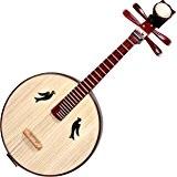 Haute Qualité zhongruan Instrument Chinois Mandoline Ruan avec acceesories