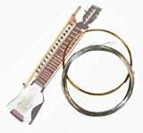 Indian dilruba complet de cordes-Entièrement en acier bronze et cordes en métal