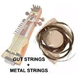 Indian Sarangi complet de cordes-Gut + Cordes en bronze et en acier Cordes en métal