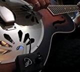 Myers Pickups Micro pour guitare Dobro avec micro col de cygne Flexible Copier et coller: myerspickups.com