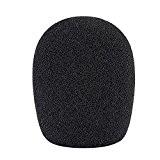 Neewer Boule Type Mousse Microphone Portable Bonnette Anti-Vent Pop Filtre pour Microphone à Condensateur, 4,5cm x 4,5cm x 12cm, Noir